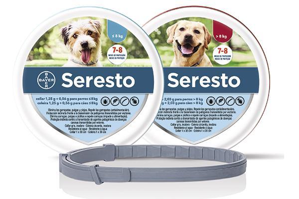 Seresto®, clave para repeler la leishmaniosis canina