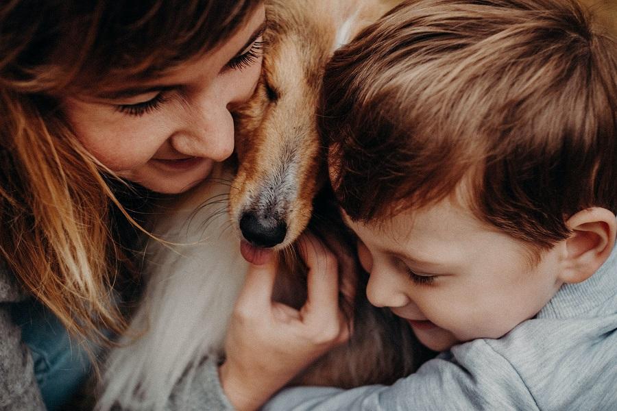 Educarse en la tenencia de un perro